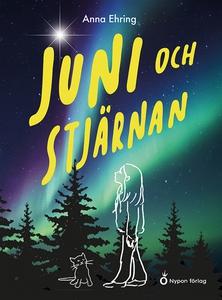Juni och stjärnan (e-bok) av Anna Ehring