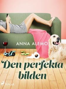 Den perfekta bilden (e-bok) av Anna Alemo