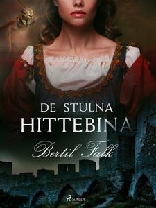 De stulna hittebina (e-bok) av Bertil Falk