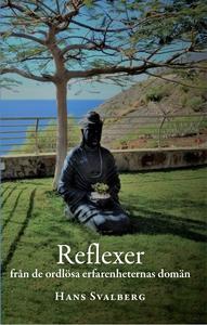 Reflexer : från de ordlösa erfarenheternas domä