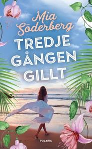 Tredje gången gillt (e-bok) av Mia Söderberg