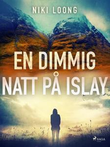 En dimmig natt på Islay (e-bok) av Niki Loong