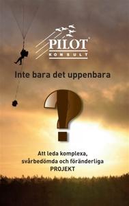 Inte bara det uppenbara (e-bok) av Sten-Åke Han
