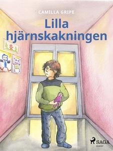 Lilla hjärnskakningen (e-bok) av Camilla Gripe