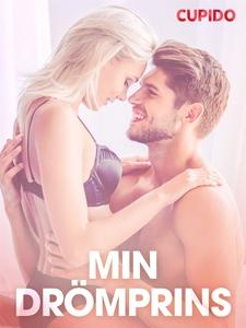 Min dro¨mprins – erotiska noveller (e-bok) av C