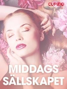 Middagssa¨llskapet – erotiska noveller (e-bok)