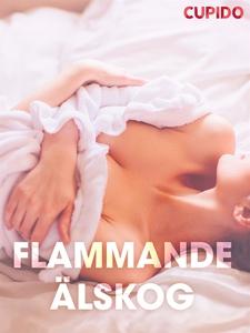 Flammande a¨lskog – erotiska noveller (e-bok) a