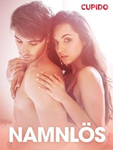 Namnlös - erotiska noveller (e-bok) av Cupido