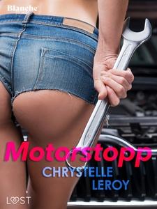 Motorstopp - erotisk novell (e-bok) av Chrystel