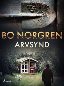 Arvsynd (e-bok) av Bo Norgren