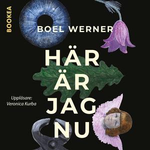 Här är jag nu (ljudbok) av Boel Werner