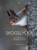 Skogslycka: Tips för möten i skogens gläntor