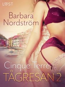 Tågresan 2: Cinque Terre - Erotisk novell (e-bo