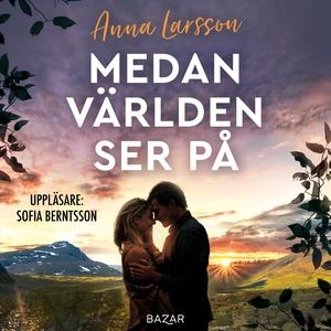 Medan världen ser på (ljudbok) av Anna Larsson