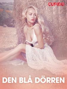 Den blå dörren - erotiska noveller (e-bok) av C