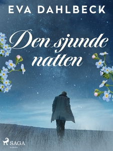 Den sjunde natten (e-bok) av Eva Dahlbeck