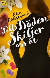 Tills döden skiljer oss åt (e-bok) av Elin Elde