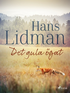 Det gula ögat (e-bok) av Hans Lidman