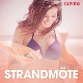 Strandmöte - erotiska noveller