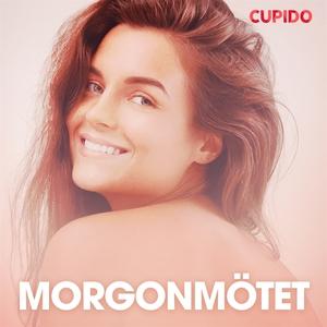 Morgonmötet - erotiska noveller (ljudbok) av Cu
