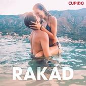 Rakad - erotiska noveller