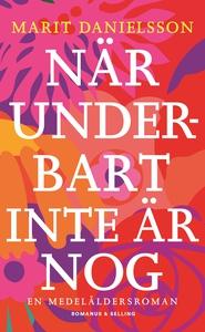 När underbart inte är nog : En medelåldersroman