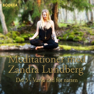 Varva ned för natten (ljudbok) av Zandra Lundbe