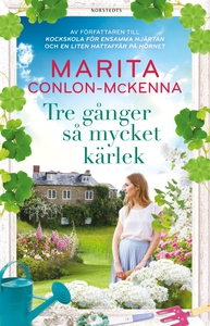 Tre gånger så mycket kärlek (e-bok) av Marita C