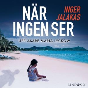 När ingen ser (ljudbok) av Inger Jalakas