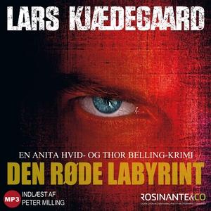 Den røde labyrint (lydbog) af Lars Kj