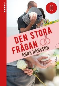 Den stora frågan (e-bok) av Anna Hansson