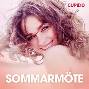 Sommarmöte - erotiska noveller (ljudbok) av Cup