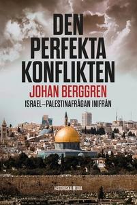 Den perfekta konflikten (e-bok) av Johan Berggr