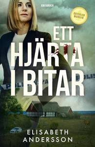 Ett hjärta i bitar (e-bok) av Elisabeth Anderss