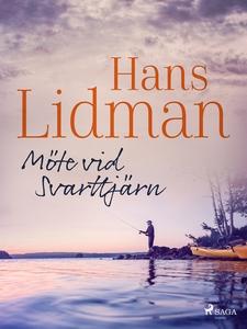 Möte vid Svarttjärn (e-bok) av Hans Lidman