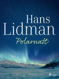 Polarnatt (e-bok) av Hans Lidman