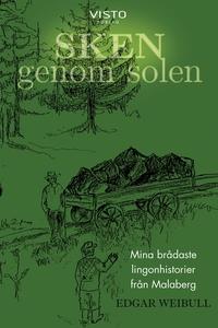 Sken genom solen (e-bok) av Edgar Weibull