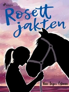 Rosettjakten (e-bok) av Nan Inger Östman