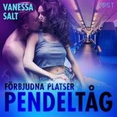 Förbjudna platser: Pendeltåg - erotisk novell