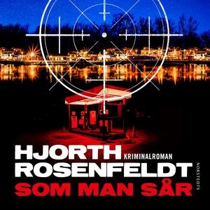 Som man sår (ljudbok) av Hans Rosenfeldt, Micha