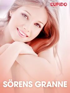 Sörens granne - erotiska noveller (e-bok) av Cu