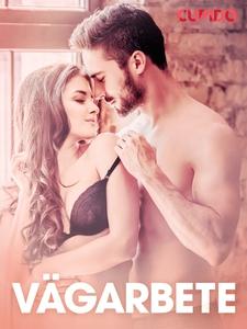 Vägarbete - erotiska noveller (e-bok) av Cupido