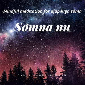Somna nu (ljudbok) av Camilla Gyllensvan