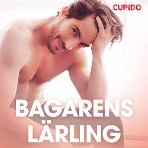 Bagarens lärling - erotiska noveller (ljudbok)