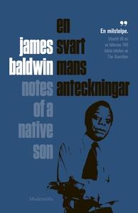 En svart mans anteckningar (e-bok) av James Bal