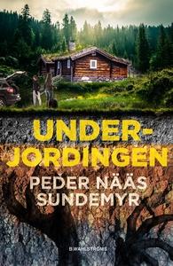 Underjordingen (e-bok) av Peder Nääs Sundemyr
