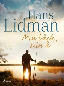 Min bäck, min å (e-bok) av Hans Lidman