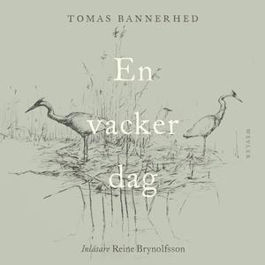 En vacker dag (ljudbok) av Tomas Bannerhed