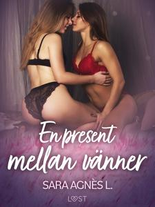 En present mellan vänner - erotisk novell (e-bo