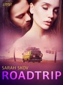 Roadtrip – erotisk novell
